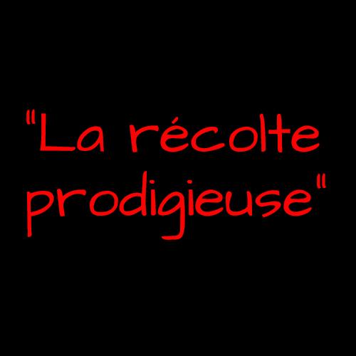"""Slogan de Garance Hayat pour Affligem : """"la récolte prodigieuse"""""""